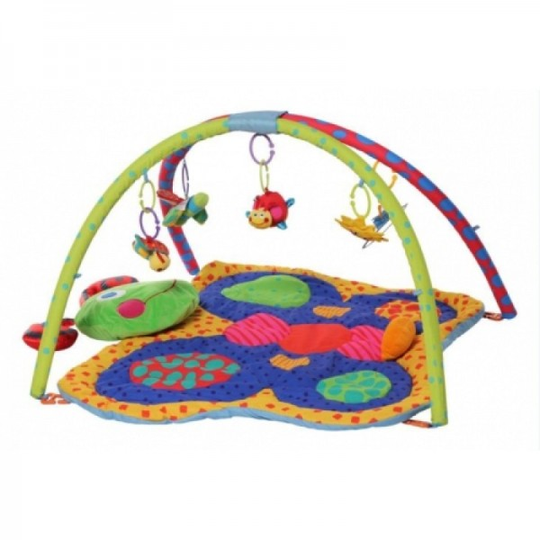 Pliko Butterfly Baby Play Gym